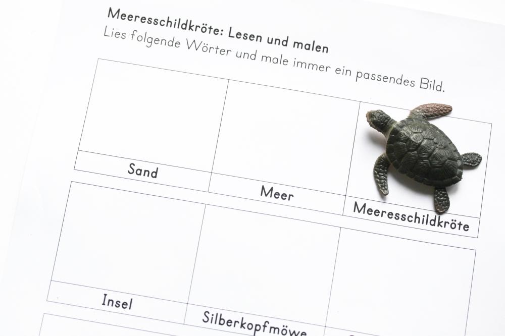 Charmant Grüne Meeresschildkröte Malvorlagen Ideen - Ideen färben ...